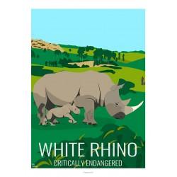 WHITE RHINO - Wild Animal - Educational Board - Poster Retro Vintage - Art Gallery - Deco