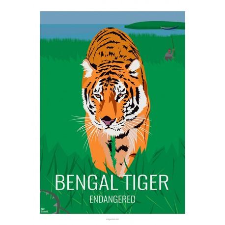 BENGAL TIGER - Wild Animal - Educational Board - Poster Retro Vintage - Art Gallery - Deco