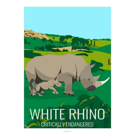 WHITE RHINO - Wild Animal - Educational Board - Poster Retro Vintage - Art Gallery - Deco