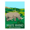 WHITE RHINOCEROS - Wildlife - Educational Board