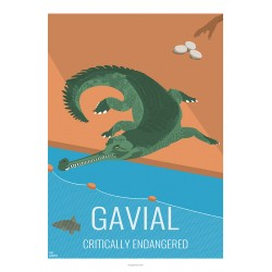 GAVIAL - Wild Animal - Educational Board - Poster Retro Vintage - Art Gallery - Deco