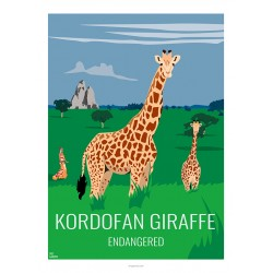 KORDOFAN GIRAFFE - Wild Animal - Educational Board - Poster Retro Vintage - Art Gallery - Deco
