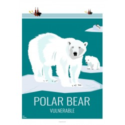 POLAR BEAR - Wildlife - Educational Board