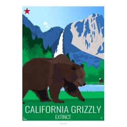 CALIFORNIA GRIZZLY - Wild Animal - Educational Board - Poster Retro Vintage - Art Gallery - Deco